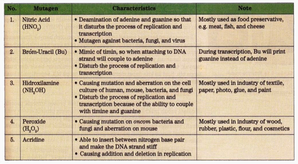 Types And Characteristic Of Mutagen New Science Biology
