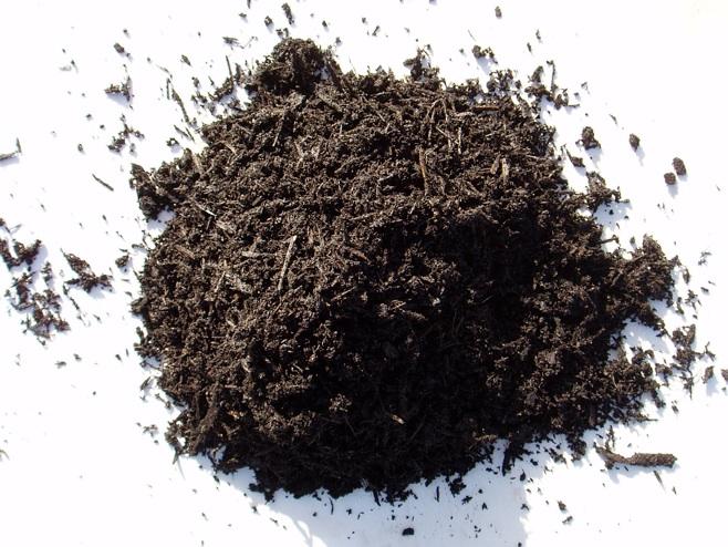 Ecolog a en la ciudad preparaci n de tierra para siembra - Preparacion de la tierra para sembrar ...