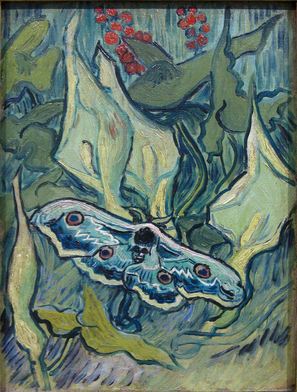 Gazette des arts: les papillons de Van Gogh