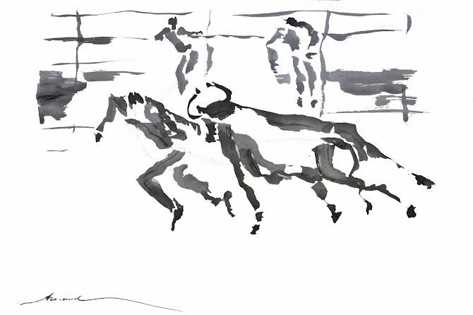 Course camarguaise 3