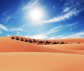 Holiday Fans travel the World RTW -family activities Budget Travel Sahara Desert Morocco
