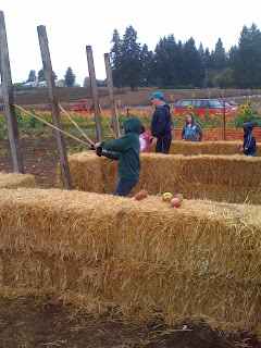 Liepold Farm Pumpkin Patch