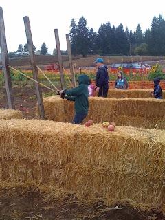Liepold Farm Pumpkin Patch