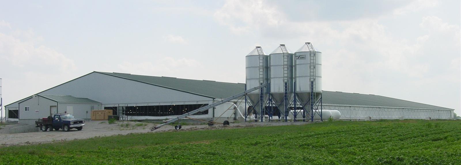 Factory Farm Or Family