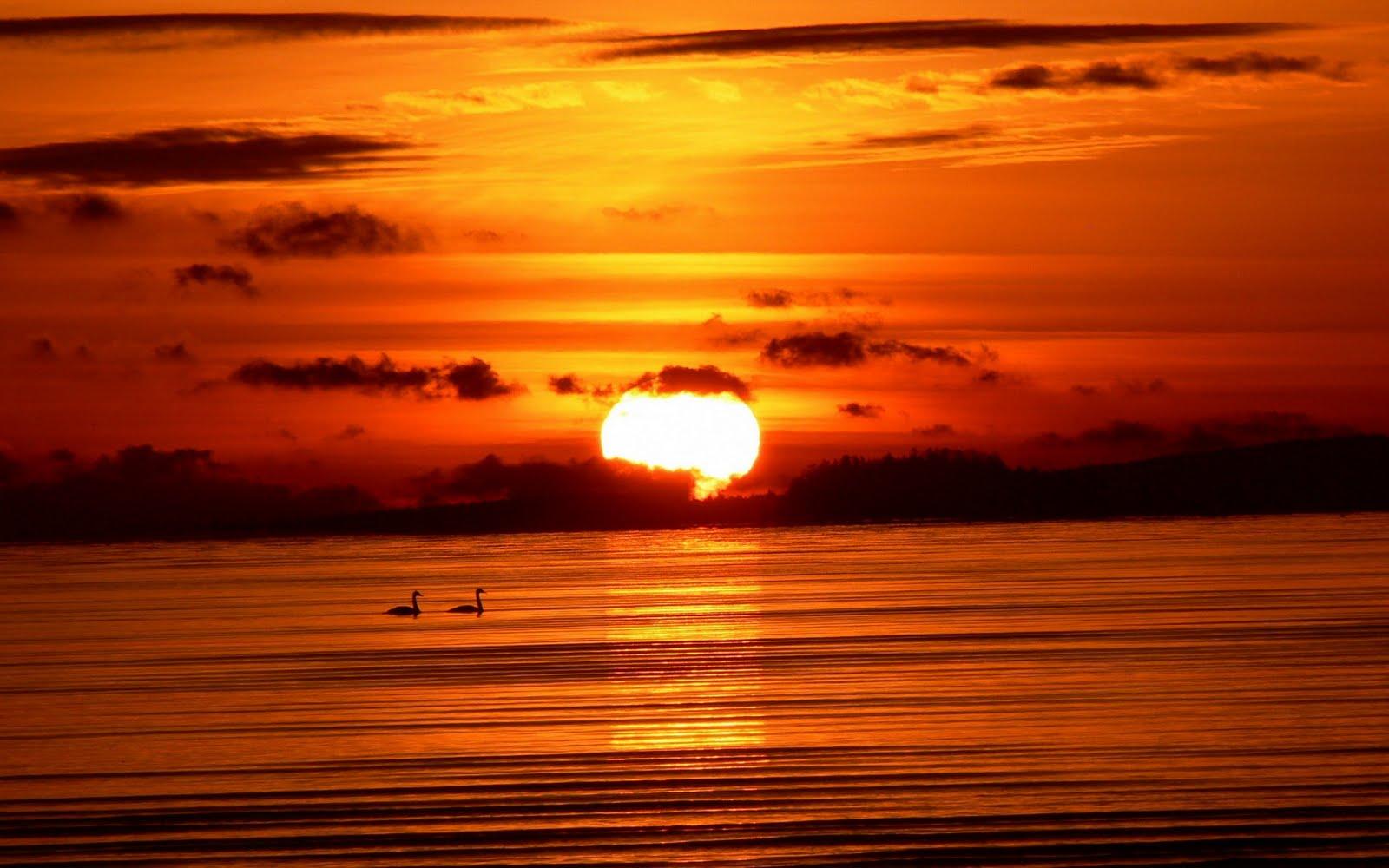 http://3.bp.blogspot.com/-JdiZUXlatqM/TtzTHrMyjZI/AAAAAAAAAtQ/wih3K2Jbdgo/s1600/sunrise-wallpaper-7-714263.jpg