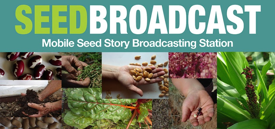 SeedBroadcast