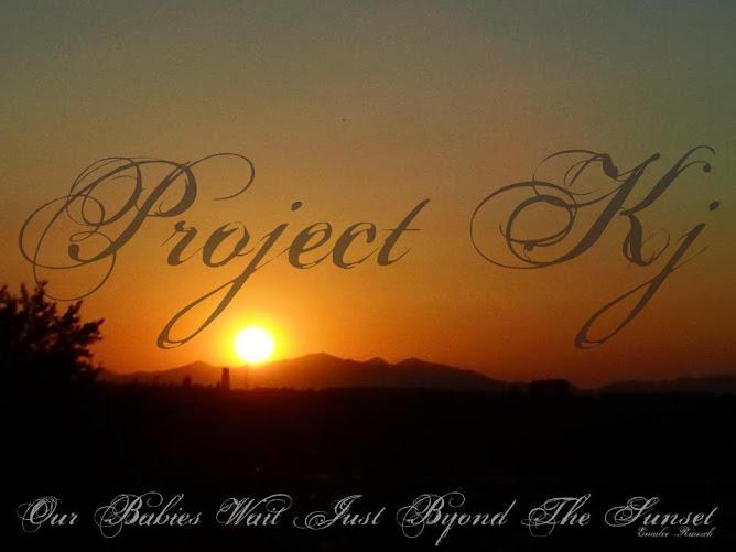 Project Kj