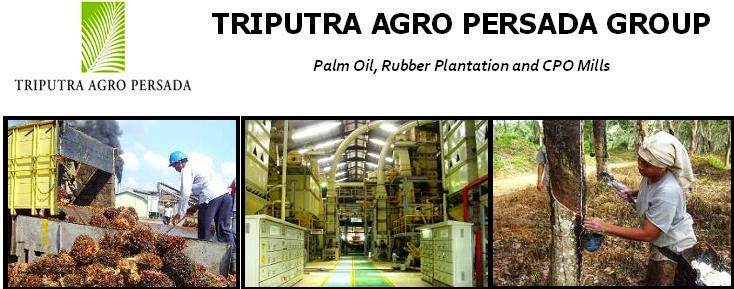 Palm Oil, Rubber Plantation and CPO Mills