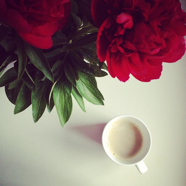 Фото для инстаграмм цветы 82