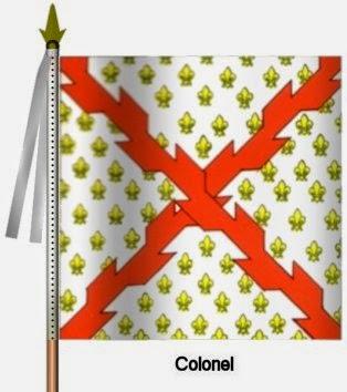 Bourgogne Infanterie Ordonnance Flag