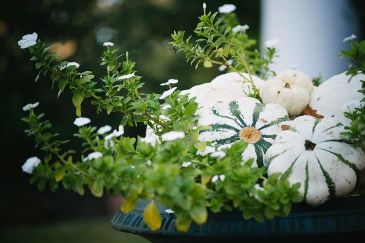 white wedding day pumpkin planter