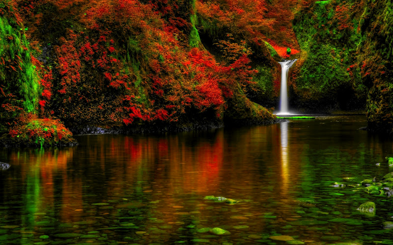 cascadas de agua para contemplar