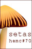 HEMC #70- Setas