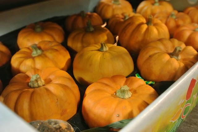 New Covent Garden Flower Market pumpkins autumn