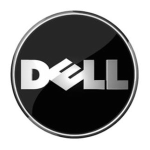 Cutting Costs Sees an Increase in Profits for Dell