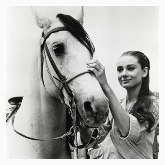 Audrey Hepburn & a horse