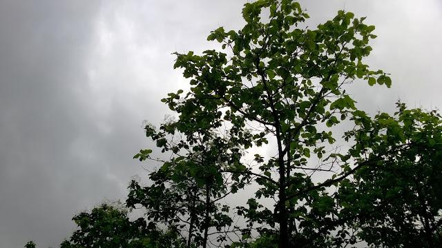 Pune, rain, clouds, Sag