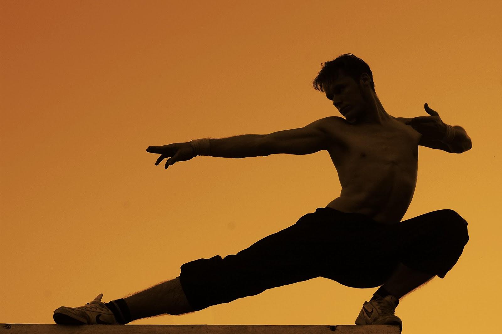 22 martial arts hd - photo #14
