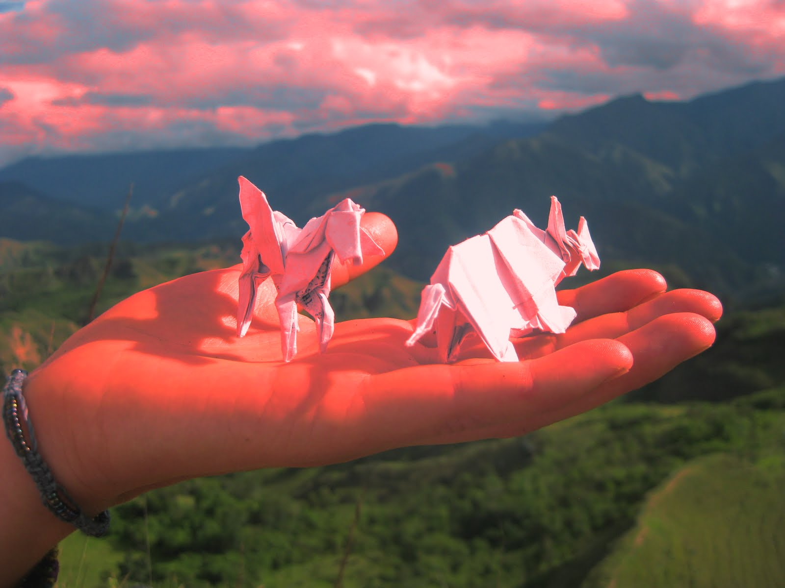 Travels with a burro origami alien origami alien jeuxipadfo Images