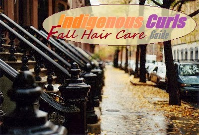Fall Hair Care Guide