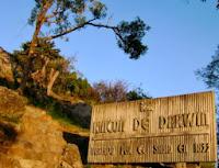 Rincon de Darwin, Punta Gorda,