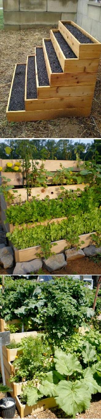 Vertical vegetable and herbs garden alternative green world for Vertical vegetable garden