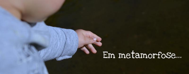 Em metamorfose