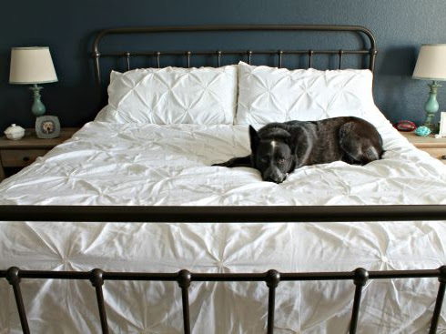 Look for Less – New Bed