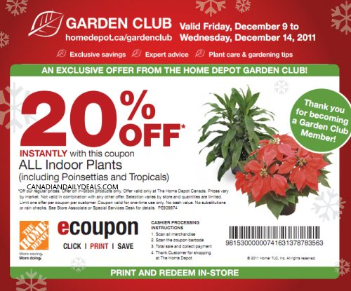 Canadian Daily Deals Home Depot 20 Off Indoor Plants