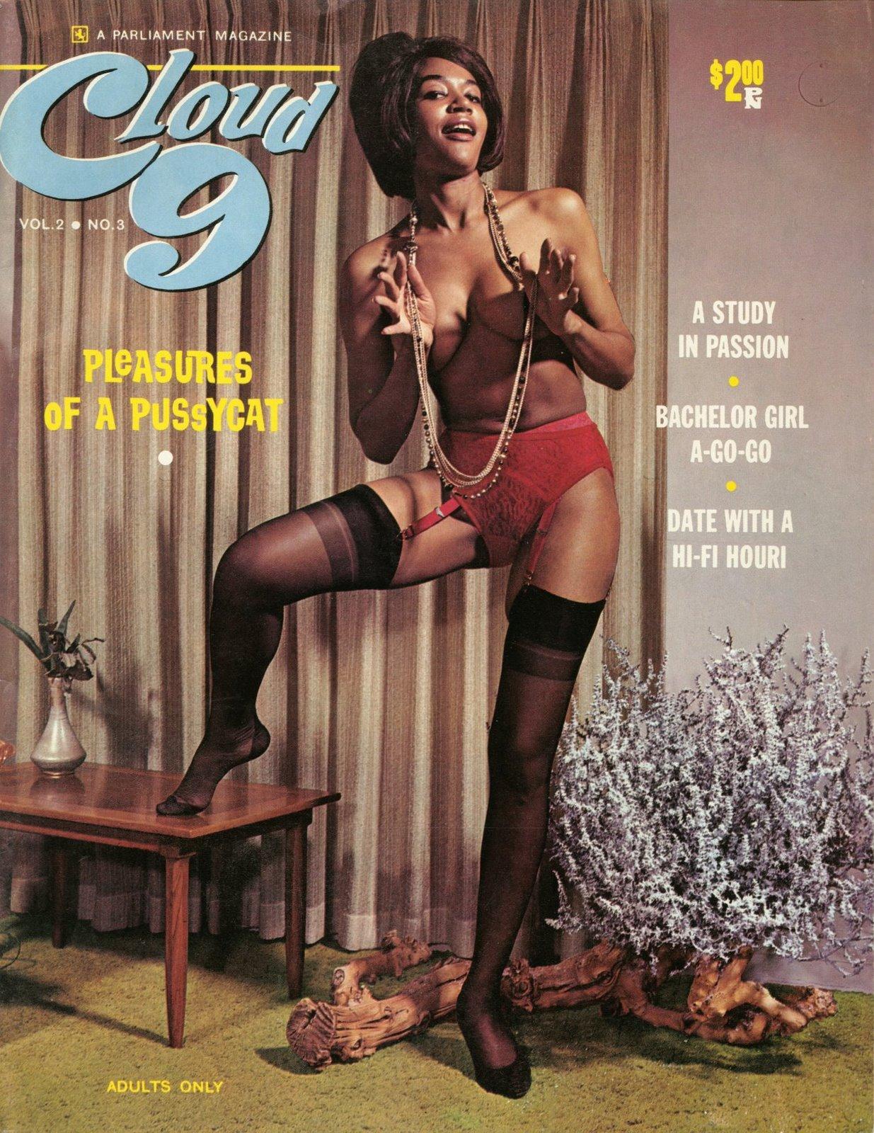pleasure porn magazine