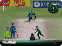 EA Cricket 2013 Screenshot 3