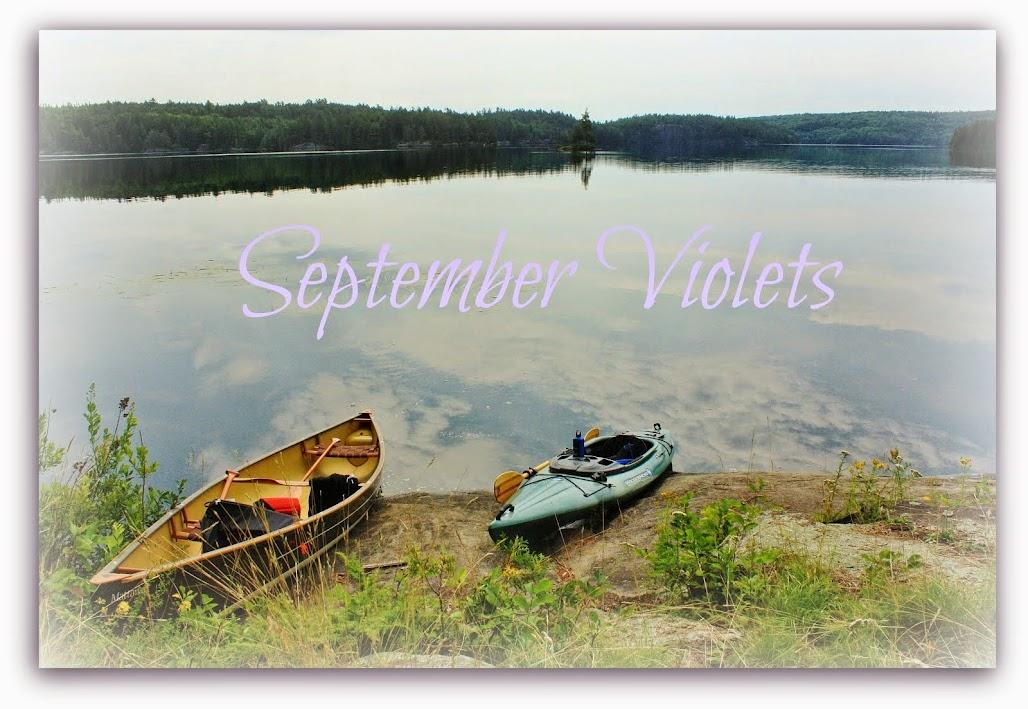September Violets