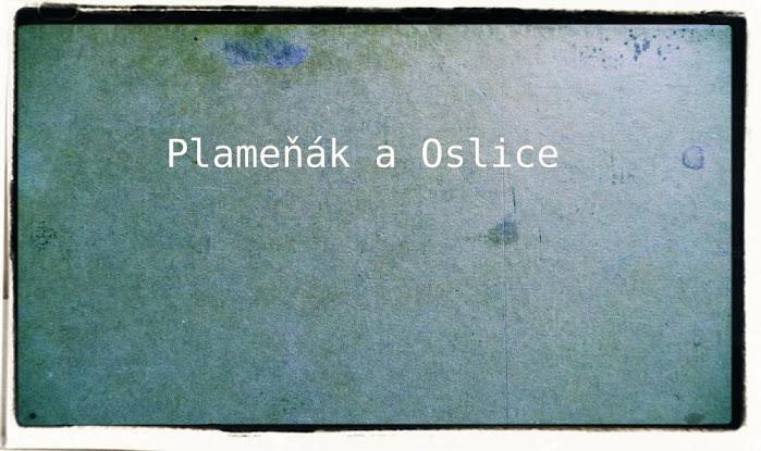 Plameňák a Oslice