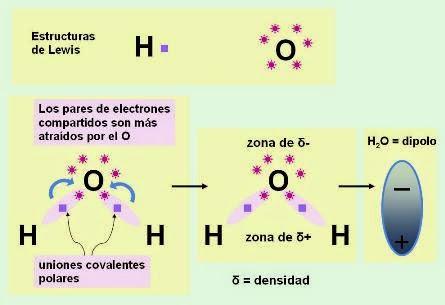 la polaridad de la mlecula de agua es la responsable de la estructura de la molcula de agua ngulo de 1045 entre hidrgenos y de sus propiedades - Tabla Periodica De Los Elementos H2o