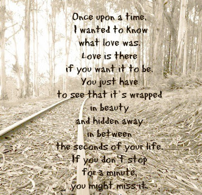 Once upon a time, I wanted to know what love was. Love is there if you want it to be. You just have to see that it's wrapped in beauty and hidden away in between the seconds of your life. If you don't stop for a minute you might miss it.