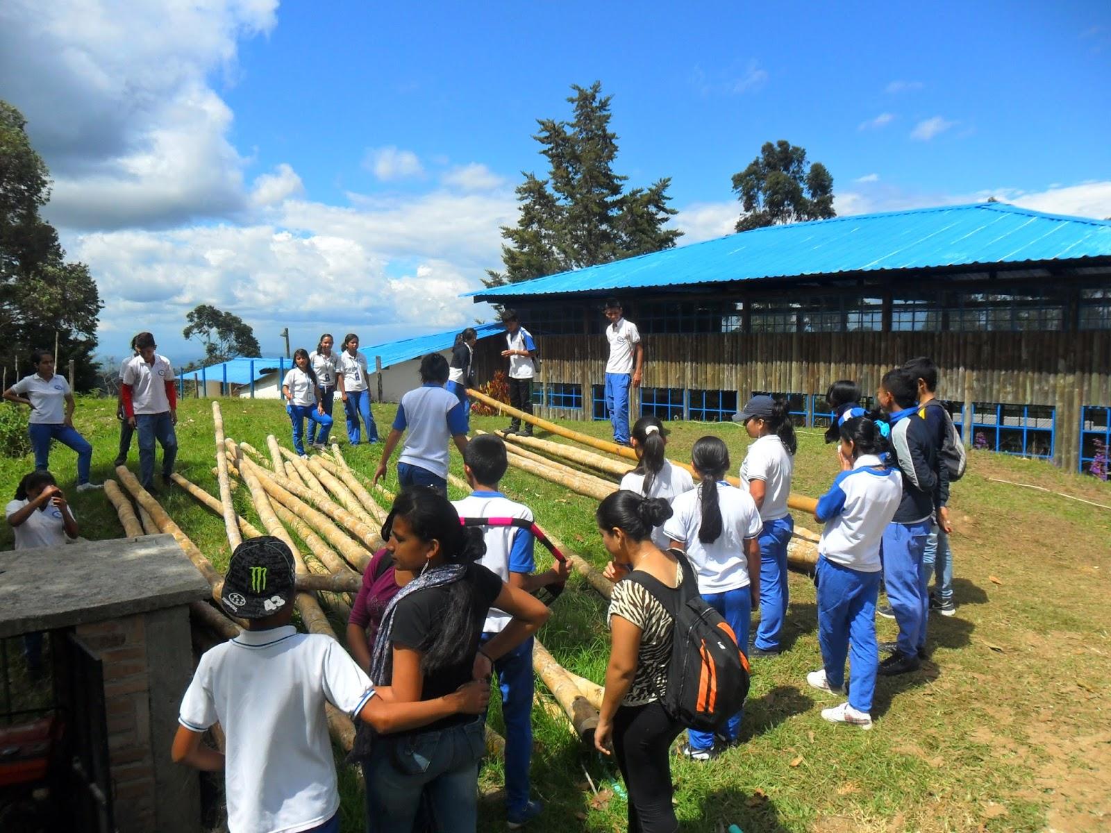 Instituto t cnico agropecuario y forestal scc el tambo for Construccion de viveros forestales