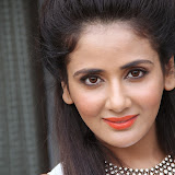 Parul Yadav Photos at South Scope Calendar 2014 Launch Photos 25283%2529