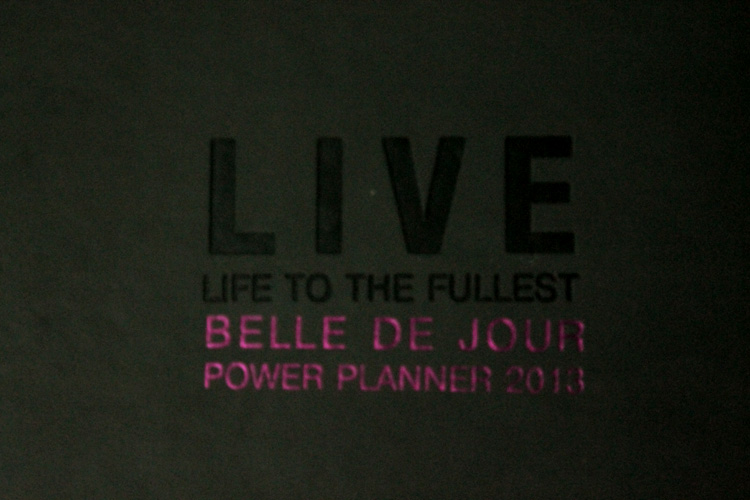A 2013 planner that happens to be one of the best planner and very usefull planner add organizer. sleek chick belle de jour power planner and its a 2013 planner that every girls need and would love. ;) A lot of descount coupons inside belle de jour planners.
