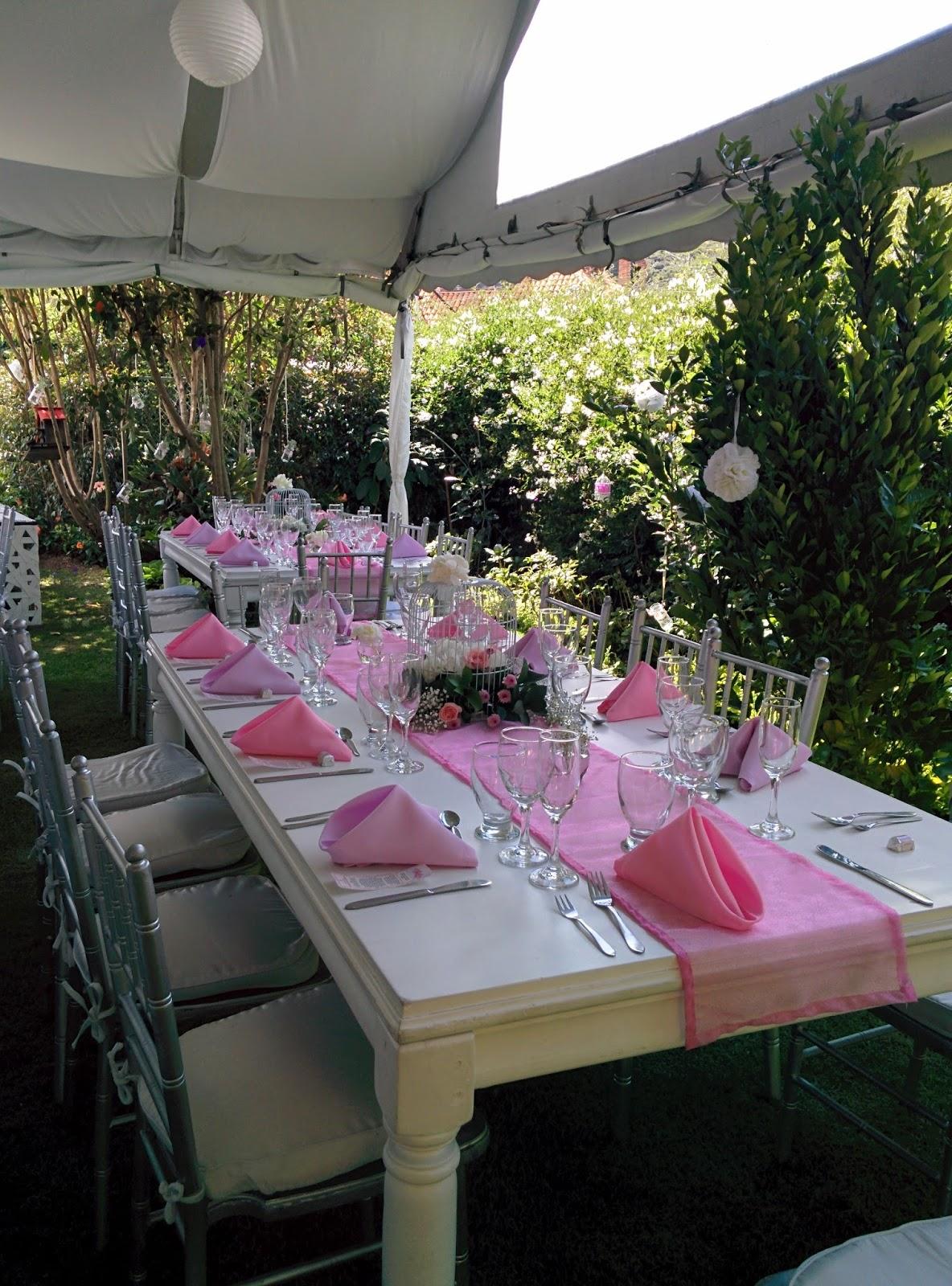 Liliana caro decoraci n y planificaci n de bodas y eventos - Decoracion con jaulas ...