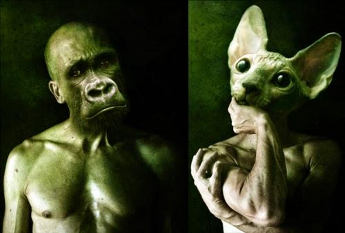 00-Francesco-Sambo-Man-Animal-Hybrids-Mashup-Photography-www-designstack-co