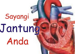 Pengertian Dan Penyebab Penyakit Jantung