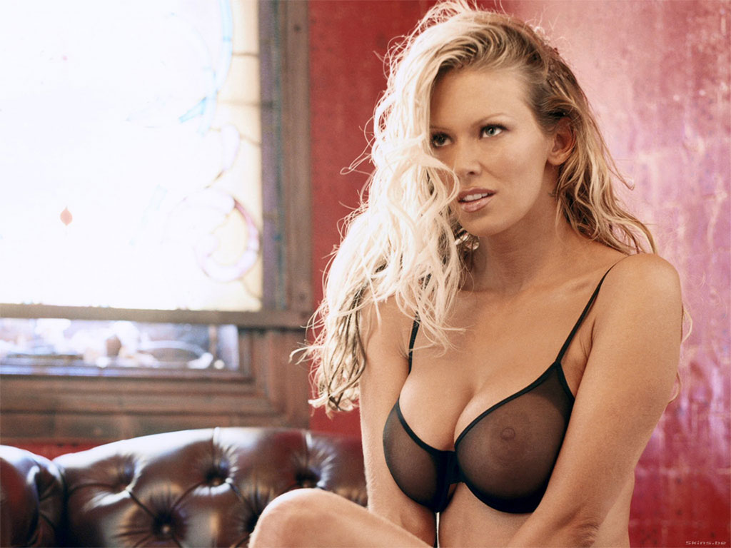 jenna jameson videos sexy cougars