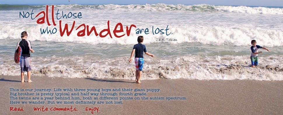 Here We Wander