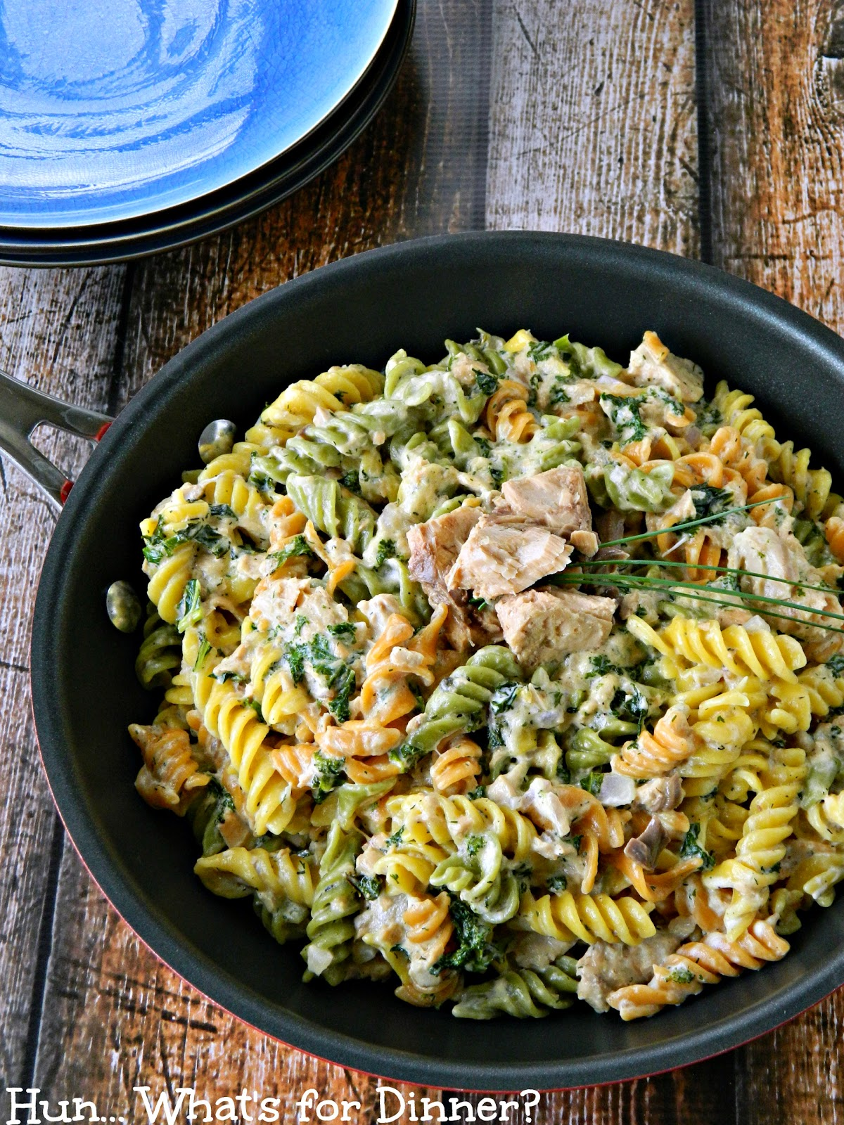 Hun... What's for Dinner?- Salmon Stroganoff Pasta