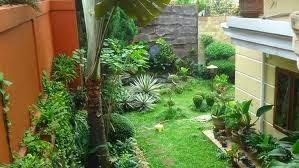 foto taman belakang rumah minimalis