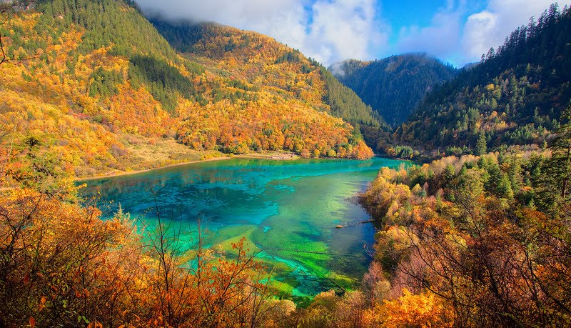 Reed Lake in Jiuzhaigou part of China, is a ... - Pinterest