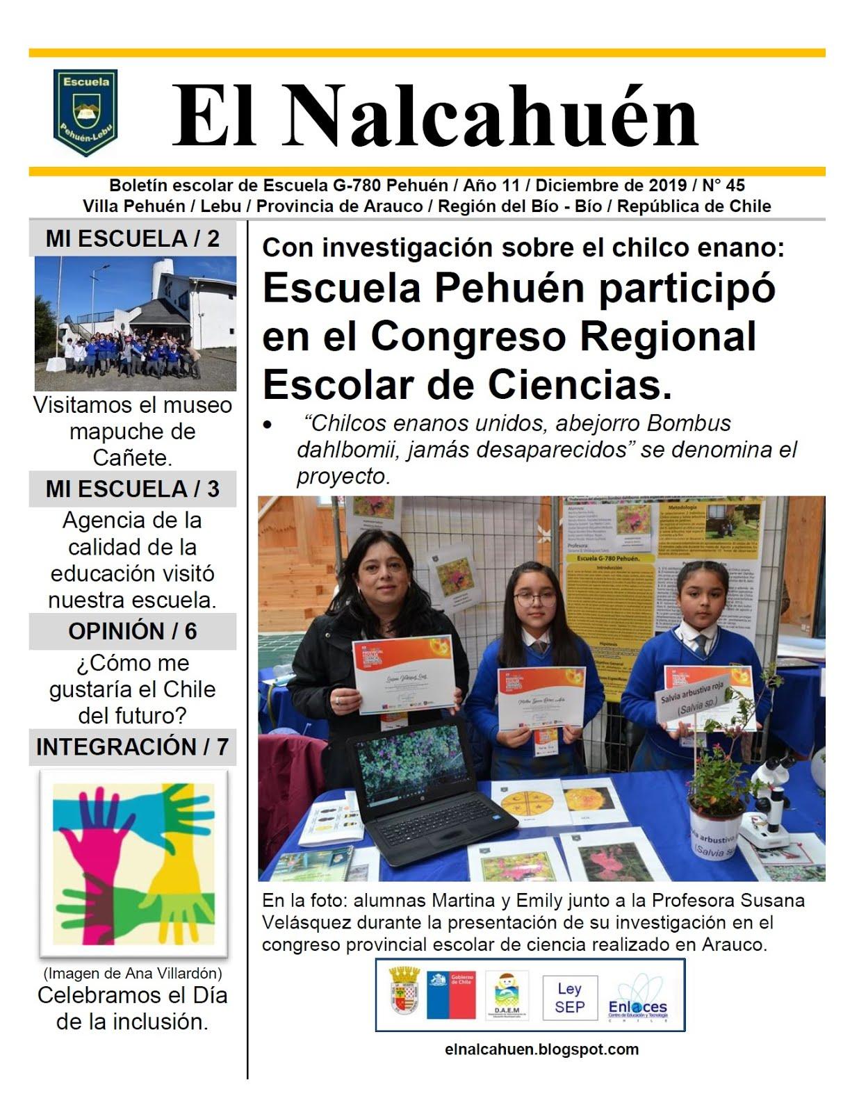 El Nalcahuén IMPRESO N° 45 (Diciembre de 2019)