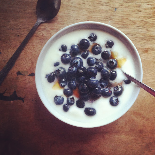 homemade yogurt and blueberries with honey