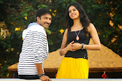 Loukyam Movie photos gallery-thumbnail-13