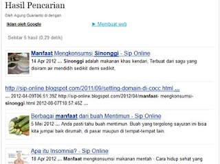 Tampilan hasil pencarian google custom